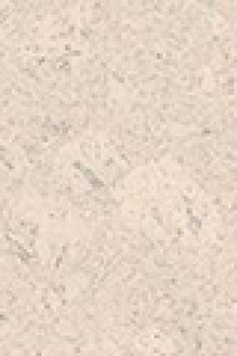 527380 haro korkboden corkett design lagos weiss lackiert. Black Bedroom Furniture Sets. Home Design Ideas