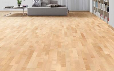 bergahorn parkett edle optik daedelow parkett. Black Bedroom Furniture Sets. Home Design Ideas