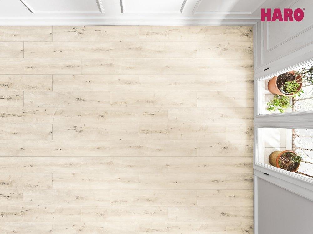 532063 haro laminat tritty 100 campus 4v alpineiche natur authentic matt. Black Bedroom Furniture Sets. Home Design Ideas