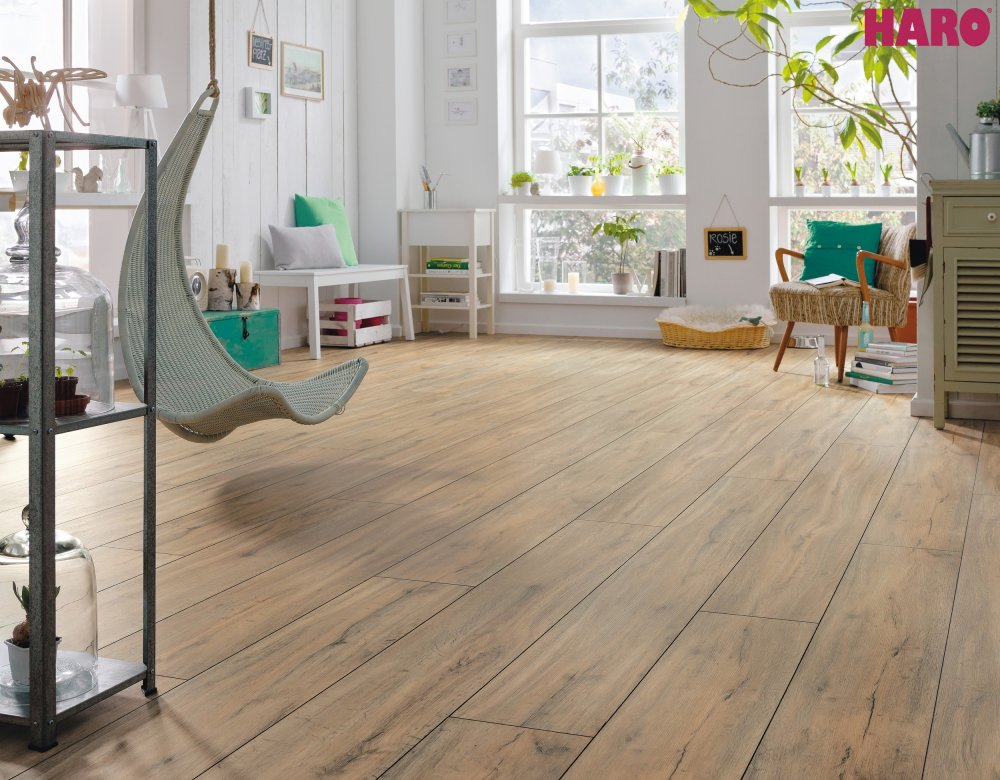 529900 disano classic by haro designboden steineiche creme xl landhausdiele strukturiert mit 4v fase. Black Bedroom Furniture Sets. Home Design Ideas